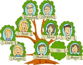 family tree translation